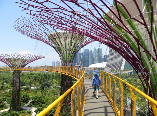 Singapore Gardens by the Bay Review - OCBC Skyway Bridge