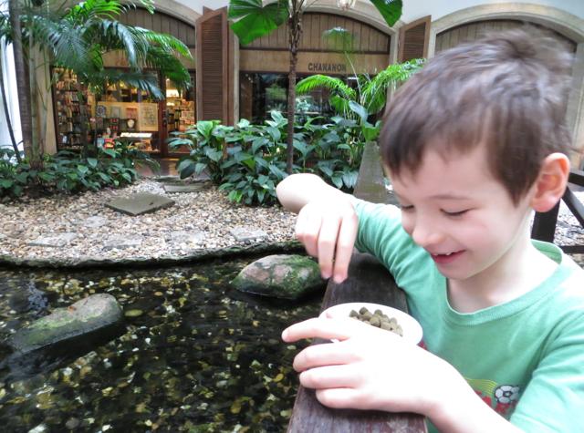 Four Seasons Bangkok Hotel Review - Feeding the Carp