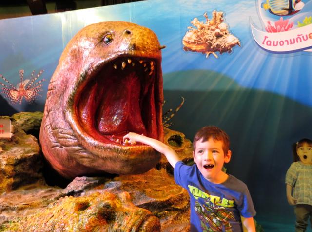 Siam Ocean World Bangkok Aquarium Photo Op