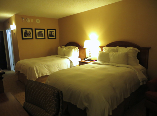 Newark Airport Hotel Marriott Review - Guest Room