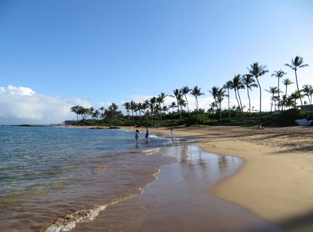 Andaz Maui at Wailea Review - Beach