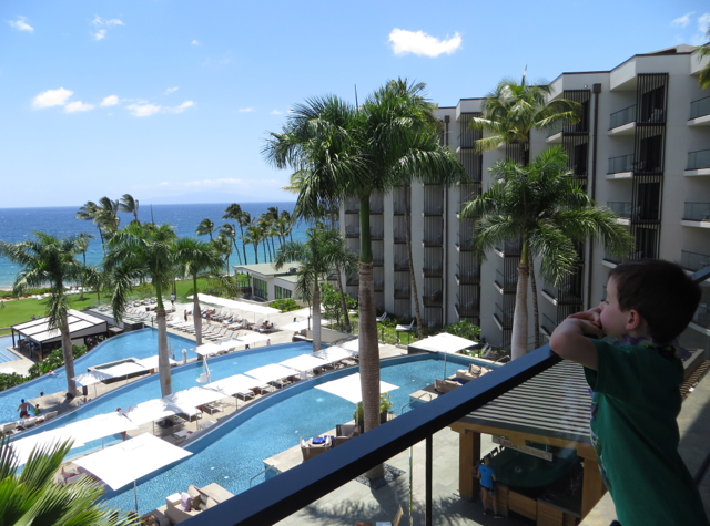 Andaz Maui at Wailea Review - View from Lobby