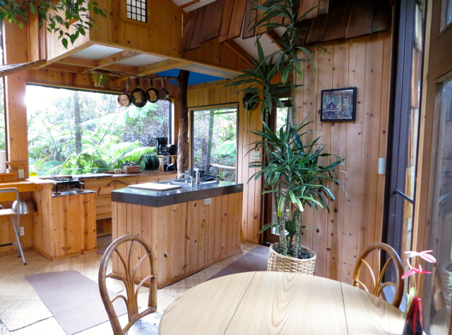 Hawaii Volcano Treehouse Review - Kitchen and Dining Table