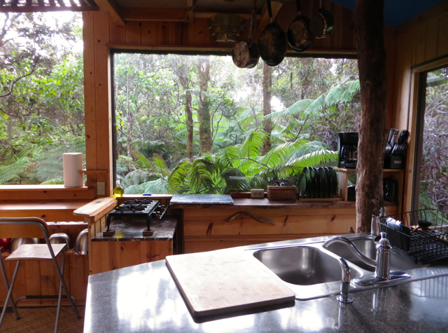 Hawaii Volcano Treehouse Review - Kitchen