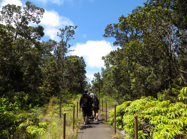 Hawaii Volcanoes National Park Review - Exploring the Summit Walk