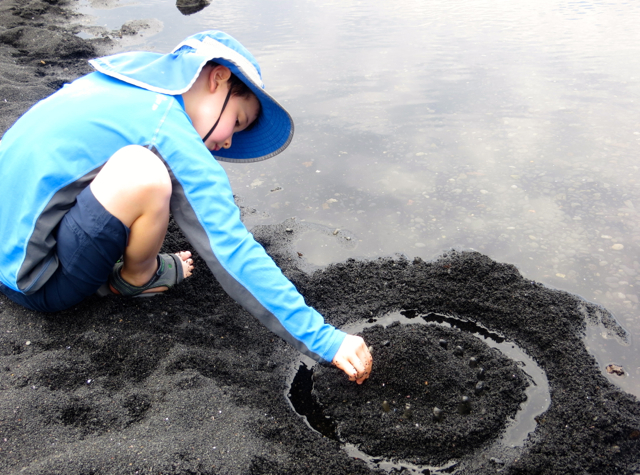 Building a Black Sand Castle, Punalu'u Beach