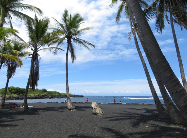 Punalu'u Black Sand Beach Photo Tour
