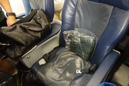 Review American Airlines Old A321 First Class With